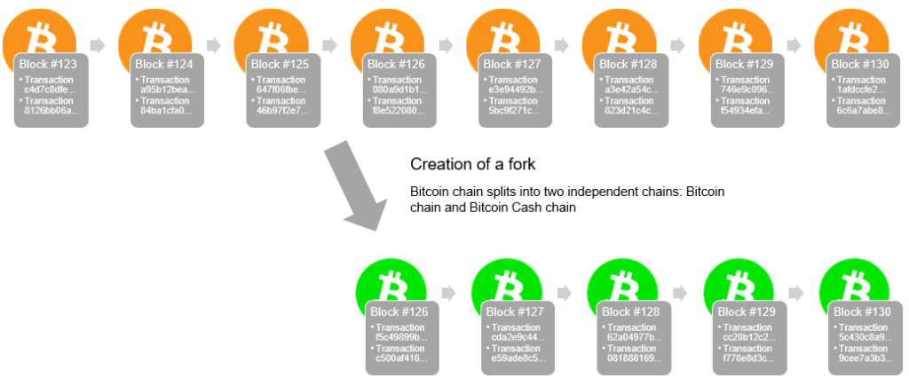Depiction of a crypto fork